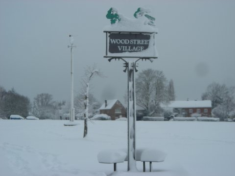 'Snow'  - Village Green 2009